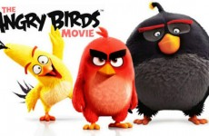 The-Angry-Birds